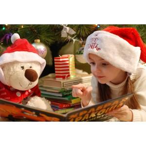 Βιβλία Χριστουγέννων