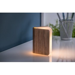 ΦΩΤΙΣΤΙΚΟ MINI SMART BOOK LED GINGKO