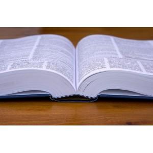 Λεξικά και Γραμματική